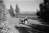 כביש טבריה-ראש פינה – הספרייה הלאומית