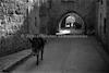 רחוב, העיר העתיקה, ירושלים – הספרייה הלאומית