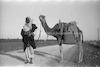 ערבי מוליך גמל, בין כרכור לחדרה – הספרייה הלאומית