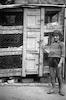 ילדה תימניה, תל אביב – הספרייה הלאומית