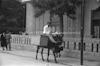 חמור נושא משא, תל אביב – הספרייה הלאומית