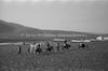 ילדים ערבים, ליד עין חרוד – הספרייה הלאומית
