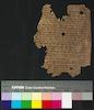 פרוש התורה בפרסית יהודית (ויקרא יא) – הספרייה הלאומית