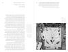 """תערוכות / עריכה: ד""""ר איה לוריא ; עריכת טקסט עברית: עינת עדי ; תרגום לאנגלית: עינת עדי, דריה קסובסקי (טקסט של עדה עובדיה)."""
