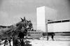 יריד המזרח, תל אביב – הספרייה הלאומית