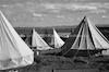"""מחנה פלוגת העבודה בית""""ר חדרה – הספרייה הלאומית"""