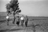 בדרך בין קיבוץ דגניה ב' לקיבוץ בית זרע – הספרייה הלאומית
