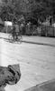רוכב אופנים, תל אביב – הספרייה הלאומית