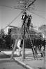 תיקון קו טלפון, תל אביב – הספרייה הלאומית