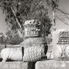 חורבות בית הכנסת העתיק בכפר נחום.