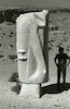 פסל על מצוקי מכתש רמון.