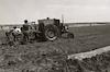 חקלאות בבקעת הירדן.