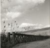 גשר מעל נהר הירדן.