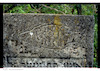 Jewish cemetery in Lanivtsi – הספרייה הלאומית