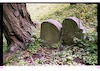 Jewish cemetery in Aschenhausen – הספרייה הלאומית