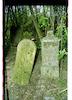 Jewish cemetery in Bezdan – הספרייה הלאומית
