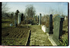 Jewish cemetery in Pančevo – הספרייה הלאומית
