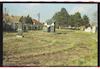Jewish cemetery in Zrenjanin – הספרייה הלאומית