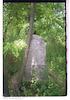 Jewish Cemetery in Čonoplja Tombstone – הספרייה הלאומית