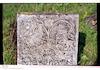 Jewish cemetery in Novoselytsia – הספרייה הלאומית