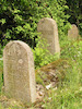Jewish cemetery in Raguva – הספרייה הלאומית