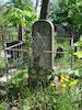 Jewish Cemetery in Vitebsk – הספרייה הלאומית