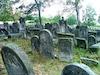 Jewish Cemetery in Radomsko – הספרייה הלאומית
