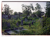 Jewish cemetery in Arad – הספרייה הלאומית