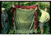 Huppah (Marriage canopy) – הספרייה הלאומית