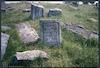 Jewish cemetery in Berezhany (Brzeżany) – הספרייה הלאומית