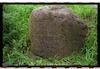 Jewish cemetery in Hrodna (Grodno) The first grave in the cemetery – הספרייה הלאומית