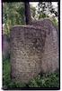 Jewish cemetery in Vyzhnytsia (Vijniţa), color photos – הספרייה הלאומית