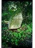 Jewish Cemetery in Nadvirna, photos 1997 Tombstone of Issakhar Ber son of Haim Segal – הספרייה הלאומית