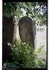 Jewish cemetery in Ozeriany (Jezierzany) – הספרייה הלאומית
