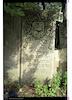 Unrecognized Jewish cemetery in Eastern Galicia – הספרייה הלאומית