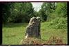 Jewish cemetery in Drohobych (Drohobycz) – הספרייה הלאומית