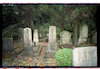 Jewish cemetery in Opatija – הספרייה הלאומית