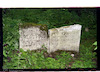 Old Jewish cemetery in Lublin – הספרייה הלאומית