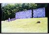 Jewish cemetery in Kazimierz Dolny Holocaust Memorial – הספרייה הלאומית