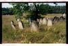 Jewish cemetery in Dąbrowa Tarnowska – הספרייה הלאומית