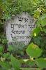 New Jewish Cemetery in Medzhybizh – הספרייה הלאומית