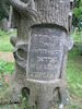 Tombstones of the Gordon family in the Third Jewish cemetery in Vilnius – הספרייה הלאומית