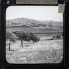 Shepherd's Field and Bethlehem – הספרייה הלאומית