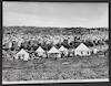 Carovana francese accampata presso Ebron: -French caravan encamped near Hebron – הספרייה הלאומית