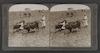 Plowing in the Valley of Ajalon, Palestine (Josh.xi.12) – הספרייה הלאומית
