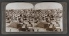 "Jerusalem, the ""City of Zion""--southwest from the northern wall--Palestine -Palestine Through the Stereoscope – הספרייה הלאומית"