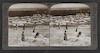 Damascus and its gardens--from the northwest--Syria -Palestine Through the Stereoscope