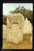 Old Jewish Cemetery in Vyshnivets - photos 2000 Tombstone – הספרייה הלאומית