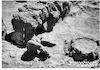 תל קסילה חפירות 1949 – הספרייה הלאומית