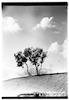 דרום תל אביב (חולון) 7.1938 – הספרייה הלאומית